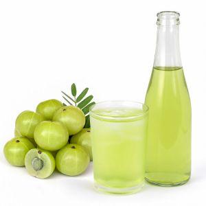 Amla Sugarless Squash (450 ml)