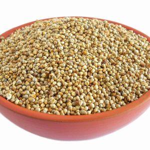 Pearl Millet (1 Kg)
